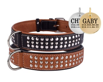 Studded Leather Personalized Dog Collar Brown Black Puppy Small Medium Large XLarge Soft Padded Optional ID Tag