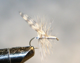 Fly Fishing Flies - Mosquito - Michigan Fisherman - Gray with Grizzly Hackle - Made in Michigan Fishing Fly - Number 10 Hook