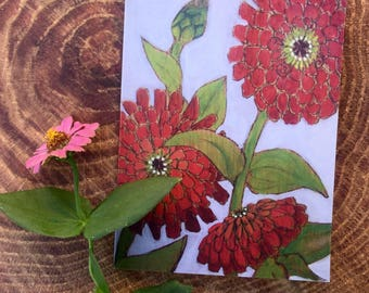 Zinnia Note Cards 6pk