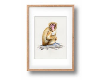 """Original watercolor painting """"Monkey with a plan""""-handpainted-unique work of art-nefarious monkey-optional framed"""