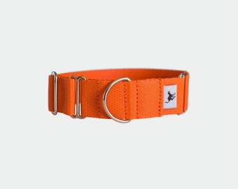 Martingale collar in Seville Orange
