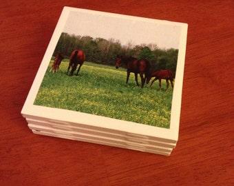 Set of 4 Handmade Tile Coasters: Grazing Horses