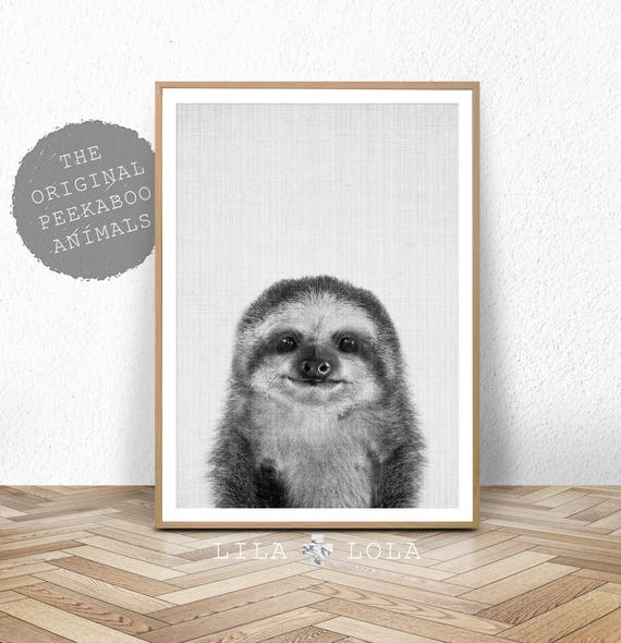 Baby Sloth Print, Baby Animal, Black White Grey Nursery Decor, Wall Art Print, Large Printable Poster Digital Download, Gender Neutral