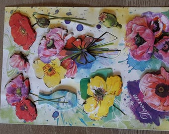 Flowers poppies stickers