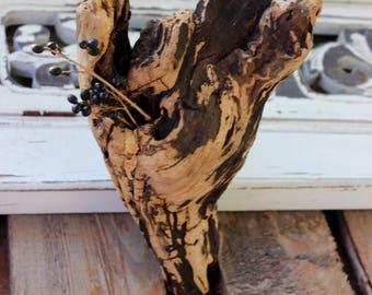 Bark Tattoo Driftwood Sculpture for Air Plant Holder , Bohemian Beach Decor and Art
