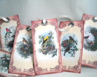Beautiful Birds and Nests Hang Tags (Set of 12)