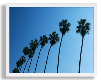 Row of Palm Trees Print Palm Tree Photography Cali Photo Print Beach Decor College Dorm Room Poster Print Blue Sky Beverly Hills Travel Art