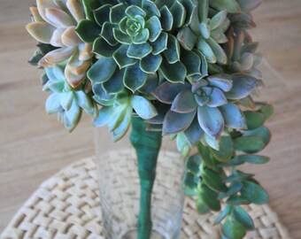 Live Succulent Bridal Bouquet