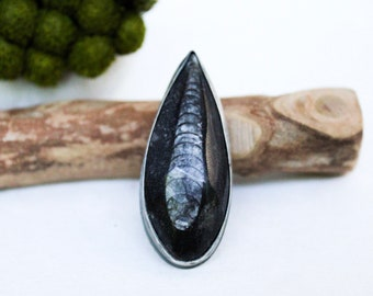 Sterling Orthoceras Fossil Statement Ring