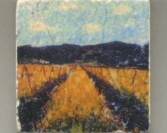 Napa Valley Mustard Fields- Original Coaster