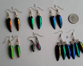 LAST ONE!! Rainbow Scarab Jewel Beetle Wing Elytra Earrings