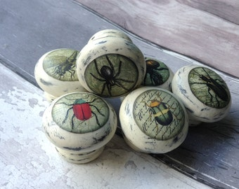 insect handles (set of 6) in choice of two colours | Bug handles | decoupaged drawer handles | drawer knobs | home decor| custom option