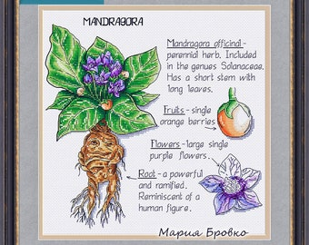 "Cross Stitch Pattern ""Mandrake"" DMC Cross Stitch Chart Needlepoint Pattern Embroidery Chart Printable PDF Instant Download"