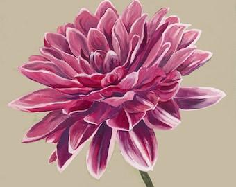 Dahlia, flower, chrysanthemum, floral, pink, pinks, pinky, crimson, flowers, petals, fleur, oil painting, art, botanical art