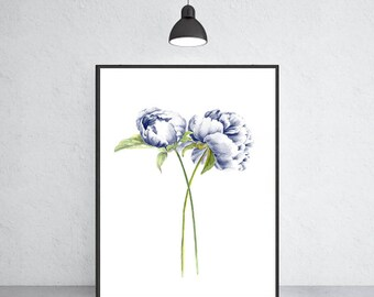 Peony art print peony watercolor painting, Flower painting, Floral art print, Botanical art
