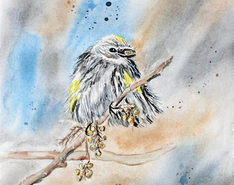 Yellow Warbler Watercolor PRINT, Bird painting, Warbler  painting, wall hanging, Yellow Warbler