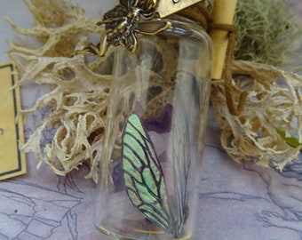 Fairy Wish Kit
