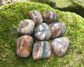 Chiastolite tumbled stones crystals