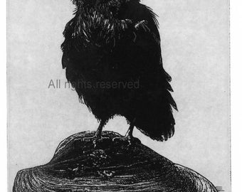 Raven artwork , Raven, crow,  Etching in assorted color  5 x 7 inch 2013