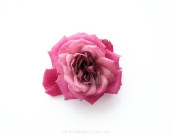 Rose. 8 x 10. tirage d'Art photographique histoire naturelle. Style simple minimal. Accessoires décoration naturelles. Intérieur jardin botanique. Fête des mères