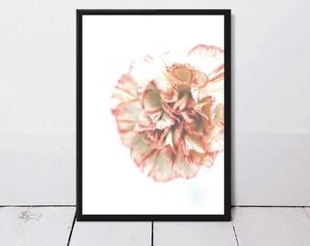 Wall Art,Poster,Prints,Home Decor,Art Print,Gift for Her,Pink Flower,Flower,Modern Art,Printable Art,Tropical,Botanical,Floral