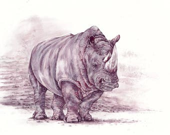 Giclee Reproduction: Wine Painting ~ White Rhinoceros
