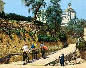Riviera di Ponente. San Remo. Italy.