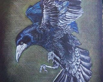 A3 sized signed print of my original drawing of a Raven