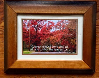 Watch the Leaves Turn, inspirational 3.5 x 5 framed photograph