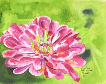 Zinnia Flower Original Watercolor Painting-Floral- Pink Green Painting-Abstract-Flower Watercolor Painting