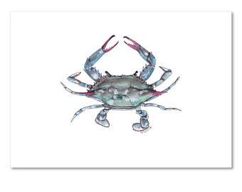 Limited Edition Print: Blue-Crab Illustration (Louisiana Seafood Series)