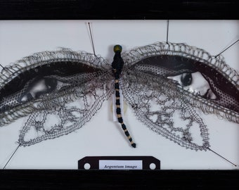 Print signed and numbered in digraphie on art paper, dragonfly