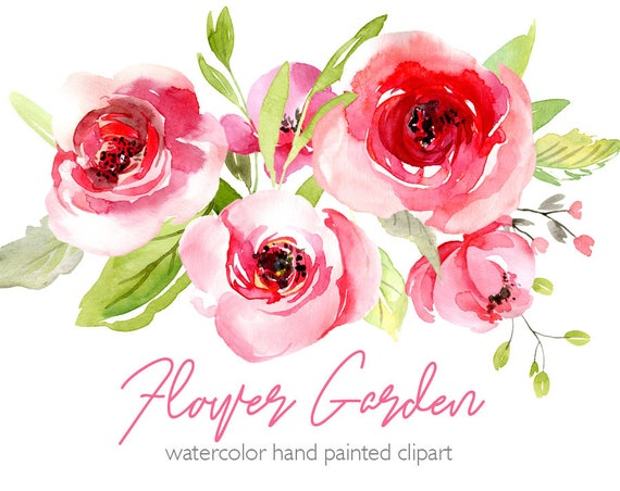 Watercolor flowers clipart pink blush red light florals roses mightylinksfo