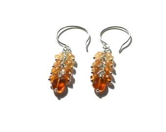 Sterling Silver Hessonite Garnet Earrings