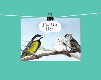 I'm the Tits! Art Print / Hand drawn colored pencil illustration / Humorous for bird lovers / Nature lovers pun