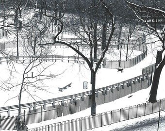 New York City, Tompkins Square With Dog in Snow, 1976.  An Original Photo Art Card.