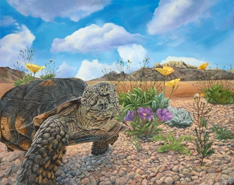 "Desert Tortoise 15"" x 12"" Print of Tortoise in the desert."