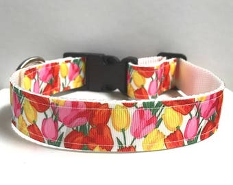 """1"""" Tulip Dog collar"""