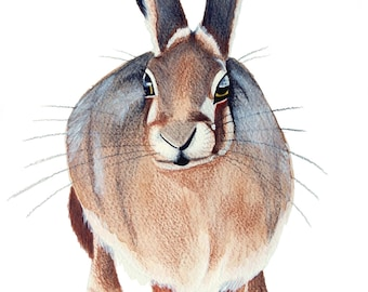 "An Earthy Brown Standing Hare Watercolour Print 12"" x 10"""
