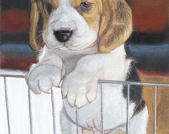 PAINTING PAINTING / ORIGINAL PASTEL / PUPPY STANDING ON HIS FENCE.
