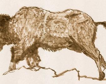 Charging Buffalo - Print; Still Life, Life Drawing, Bison, Ink, Marker, Illustration, Flat Art