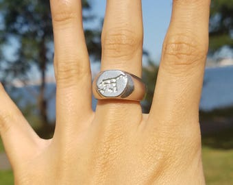Ursa Major constellation signet ring