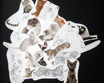 20 CAT clippings for your art projects color black and white line drawing Super cute cats
