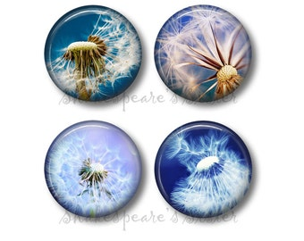 Dandelion Magnets - Fridge Magnets - Flower Magnets - Dandelion Gift - 4 Magnets - 1.5 Inch Magnets - Kitchen Magnets