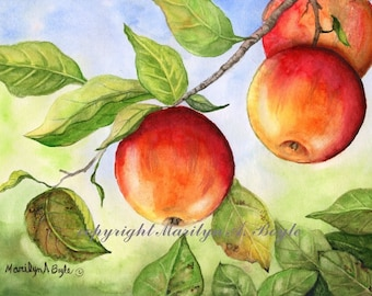 APPLE WATERCOLOR PAINTING; original art, wall art, kitchen art, dining room art, 7.50 x 10 inches