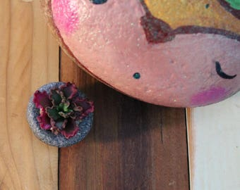 Polymer Clay Echeveria 'Coral Reef' Magnet