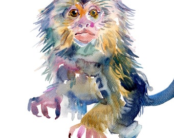 Marmoset baby - Watercolor Painting - Animal Painting -  Size 8x10in - Nursery Art Print