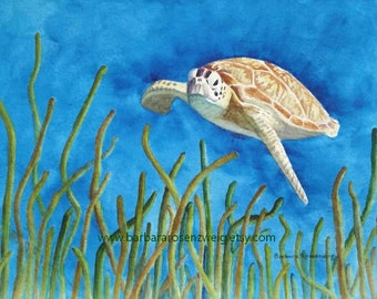 Sea Turtle Art Print of Original Watercolor, Turtle Decor, Turtle Wall Art, Turtle Print, Turtle Painting, Coastal Decor, Nautical Decor Art