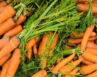 Food Photography - Carrots - Farmers Market - San Francisco, CA - Fine Art Photograph - Kitchen Wall Art