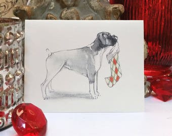 Boxed Boxer Holiday Cards